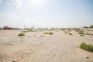Lands for Sale in UAE