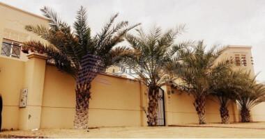 Villas for Rent in Al Barsha South 2